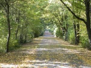 Hochspannungsweg 2015 Teltower Dörferweg, Etappe 4, Vom S-Bahnhof Schichauweg zum U-Bahnhof Rudow