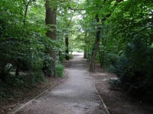 Jochen-Klepper-Park (2016) Jochen-Klepper-Park, Planetarium, Insulaner, Sommerbad, Sembritzkipfuhl