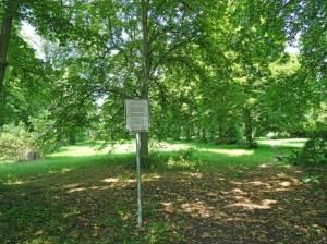 Ehemaliger Friedhof Blankenfelde (2017) Ehemaliger Friedhof Blankenfelde, Begräbnisstätte für Kriegsopfer