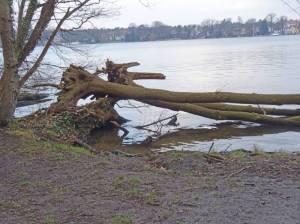 Schmöckwitzer Werder, Zeuthener See (2018) Schmöckwitzer Werder, Berlin-Schmöckwitz, Zeuthener See, Krossinsee, Oder-Spree-Kanal