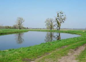 Nauen-Paretzer Kanal 2018 Nauen-Paretzer Kanal,