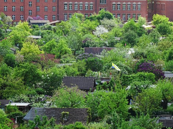 kleingarten berlin sechs jahre schutz fr mehrere. Black Bedroom Furniture Sets. Home Design Ideas